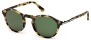 Покупка или уголемяване на тази картинка, Tods Eyewear TO0179-56N.
